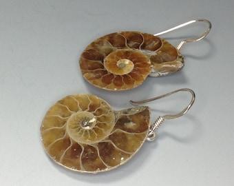 ba9629e15 Ammonite earrings | Etsy