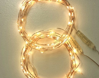 100 Fairy Lights (2*50) on coated copper wire string lights. These vine lights use battery or plug-in power with a timer.