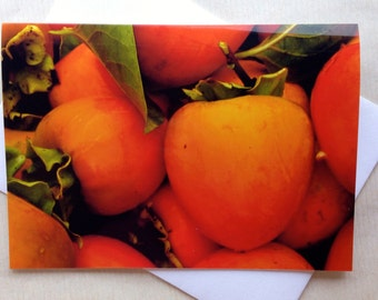 Thanksgiving Greeting Cards - Fall Cards - Holiday Cards