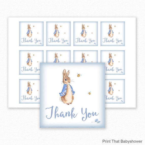 Peter Rabbit Favor Tags-It/'s a Girl Thank You Tags-Baby Shower Tags-Set of 12
