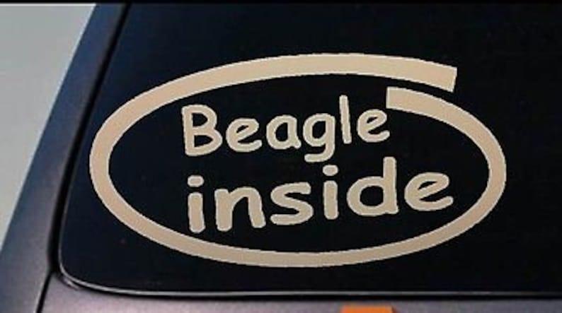 Beagle Decal Sticker Car Window *C194*