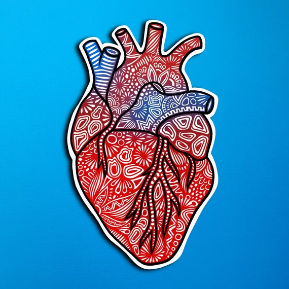Anatomical Heart Sticker (WATERPROOF)