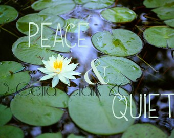 5x7 or 8x10 Art Print // Lily pads on Pond // Peace & Quiet // Original Photographic Print