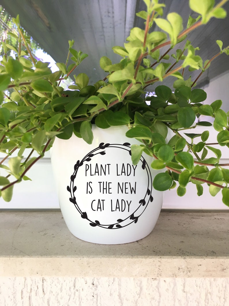 DIY Decal for Pot Planter Plant Lady is the New Cat Lady image 0