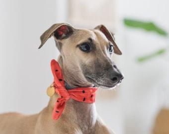 Soft dog collar • necktie bandana • watermelon coral red