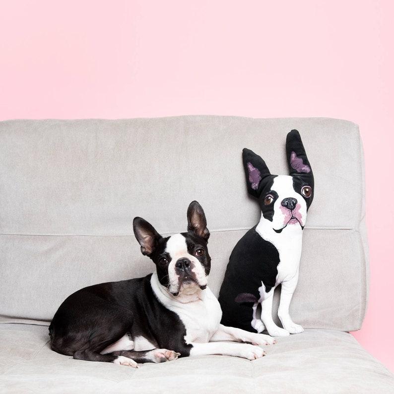 Pet portrait pillow  Custom designed  Illustrated dog or cat image 0