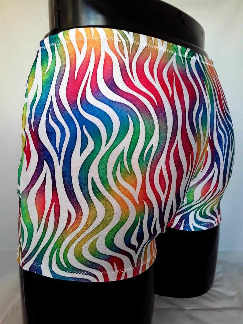 Mens Lycra Boxers Rainbow Tiger Stretch shorts Festival image 0