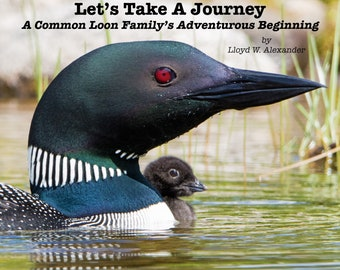 Let's Take A Journey, A Common Loon Family's Adventurous Beginning