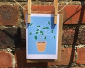 Chinese Money Plant Card with Vegan Envelope - Good Luck - Congratulations - Housewarming - Moving - Pilea peperomioides - UFO Pancake Plant