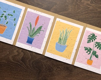 Pack of 4 Houseplant Cards - Monstera Deliciosa / Vriesea Splendens / Sansevieria / Chinese Money Plant - Housewarming / Friendship Cards