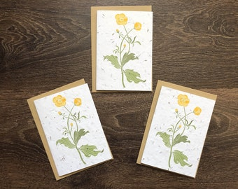 Buttercups - Pack of 3 Plantable Seed Cards with Vegan Envelopes - Birthday Cards / British Wildflower Wedding Invitations / Save the Dates