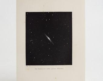 Original Antique Leo Minor Constellation Engraving/Print