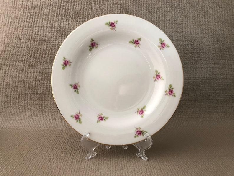 Vintage China Salad/Dessert Plate English Bone China Pink image 0