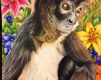 Amy- the spider monkey, signed PRINT of an original colored pencil drawing- Primate-SKU#RL-013