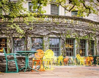 Memorial Union Terrace Chairs & Vines - University of Wisconsin Lakefront in Madison - Madison Wisconsin - Wall Art