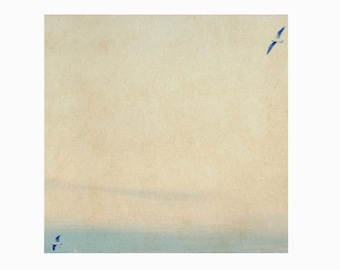 In love with a view. Photography, bird over sea, seagull in flight, square