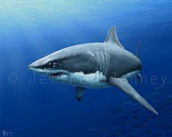 Great White Shark Painting - 8x10 Fine Art Print From An Original Painting By Jeffrey Jenney - Ocean Art - Shark Art - Shark Print