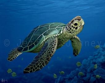 Sea Turtle Print - Fine Art Print From An Original Painting - 8x10 - By Jeffrey Jenney - Ocean Art - Green Sea Turtle - Sea Turtle Wall Art