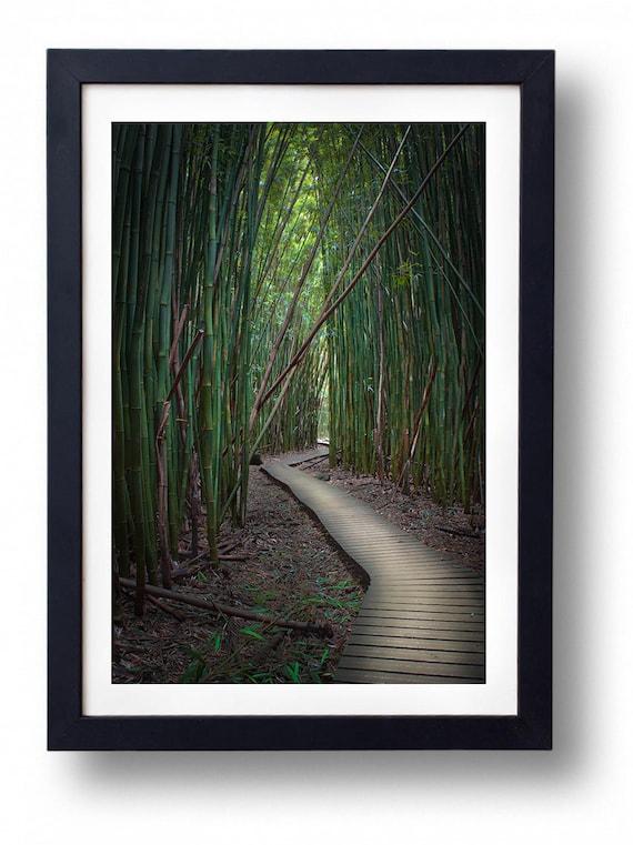 Strasse Nach Hana Maui Hawaii Bambuswald Fine Art Fotografie Etsy
