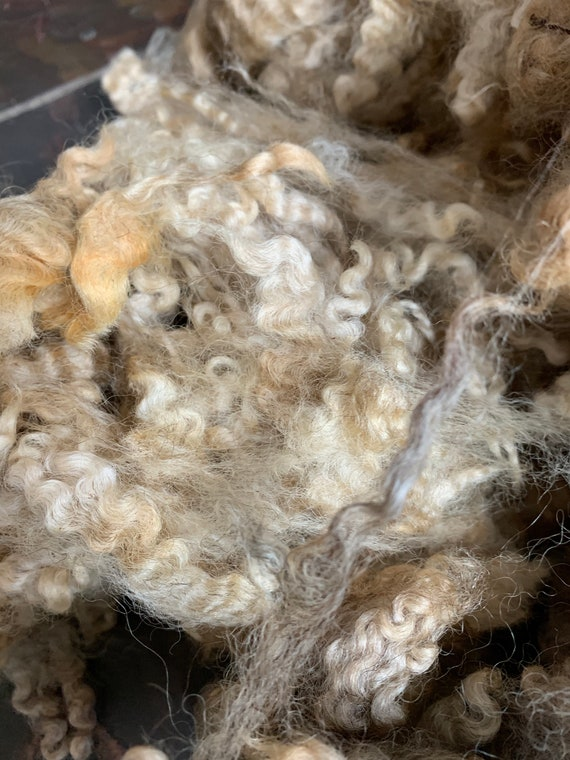 Raw Romney Fleece