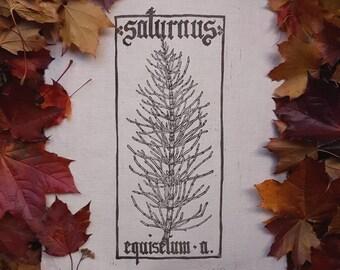 Saturnus-Equisetum Arvense PLANHERBARIUM linocut Print