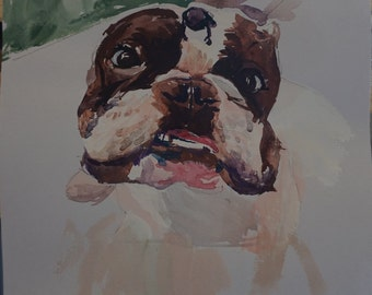 Custom pet portraits by hand watercolor, have your pet's portraits with only 20 bucks