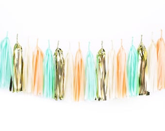 DIY Tissue Tassel Garland Kit - Mint & Peach - Ivory, Blush, Gold, White Paper Room Wedding Shower Tassle Decor Balloon Tail