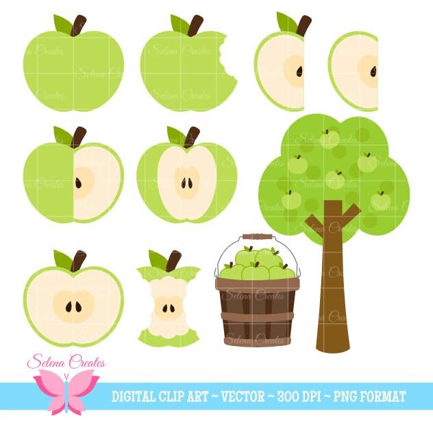 Green Apple Clipart Set Digital Clipart Apple Basket Apple Etsy