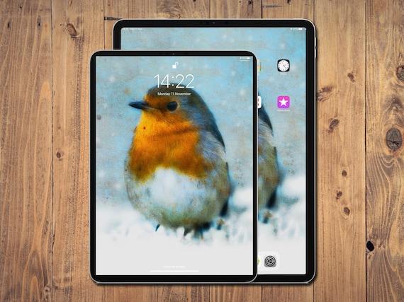 Christmas Robin Ipad And Iphone Wallpaper Digital Art Etsy