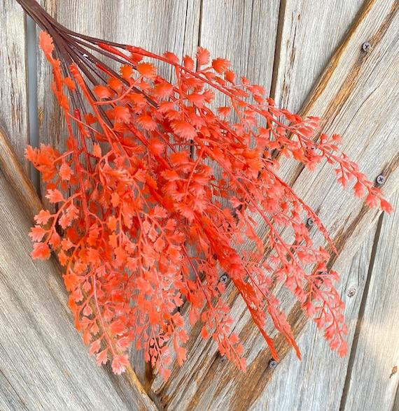 Autumn Maindenhair Bush, Wreath Supply