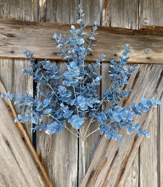 Blue Eucalyptus Bush