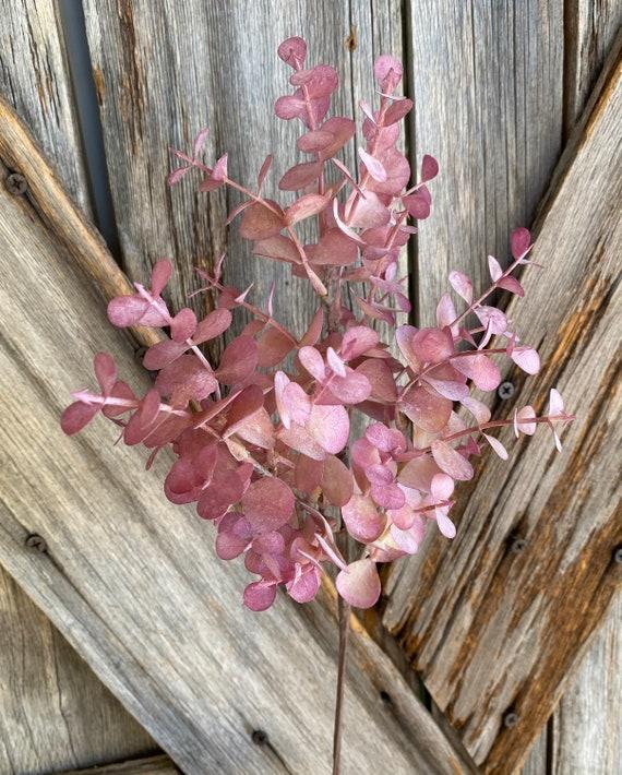 Purple Eucalyptus Bundle