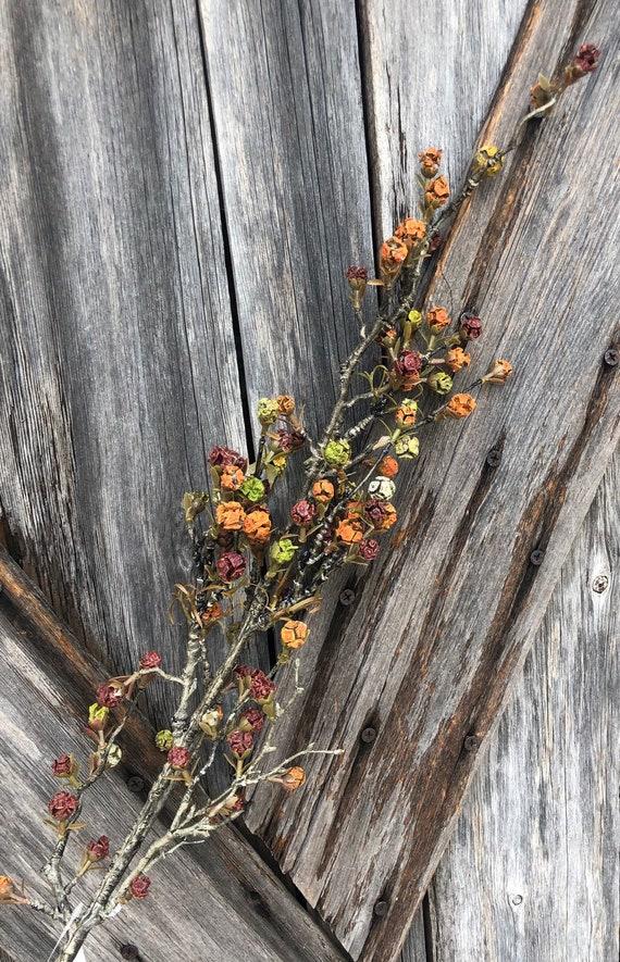 Wreath Supply, Autumn Bud Branch