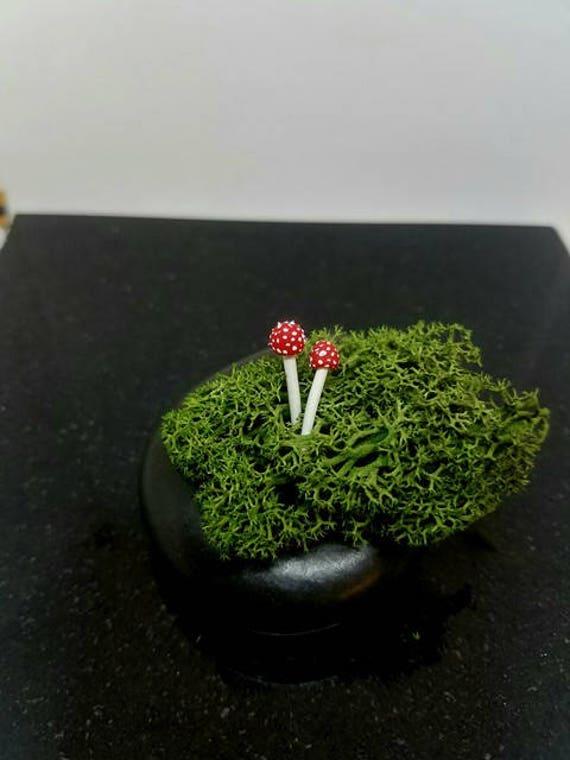 Terrarium Figurines, Mushroom Decorations, 2 clay mushrooms, Terrarium accessories,miniature mushroom, fairy garden, Realistic mushrooms