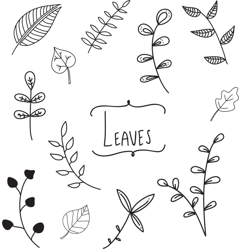Hand Drawn Clip Art Leaves Commercial Use Doodle Art Svg Png Etsy