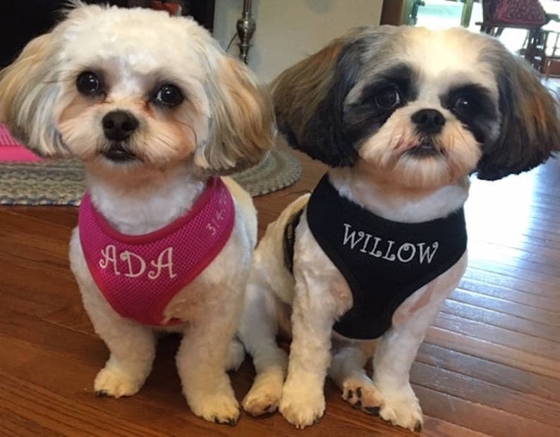 S-XL only Add a Phone Number to your Personalized Custom Embroidered harness back shoulder This is not a listing for the harness itself