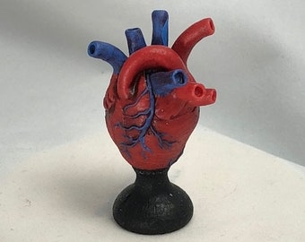 miniature anatomical heart hand painted