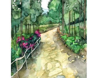 """Kenyan Road Painting - Print titled, """"Nakuru Road"""", Forest Path, Woodland Decor, Woods, Forest, Watercolor Landscape, Dirt Road, Painting"""