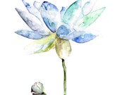 "Lotus Painting - Print from Original Watercolor Painting, ""Lotus"", Spring Flower, Botanical, Garden, Blue Flower, Watercolor Flower"