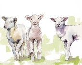 "Lamb Painting - Print from Original Watercolor Painting, ""Three Lambs"", Nursery Decor, Sheep, Lamb Nursery, Baby"