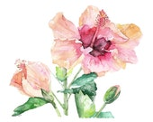"Hibiscus Painting - Print from Original Watercolor Painting, ""Hibiscus and Bud"", Hibiscus flower, Flowers, Watercolor Flower"
