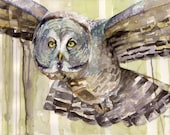 "Owl Painting - Print from my Original Watercolor Painting, ""The Solo Flyer"", Great Horned Owl, Owl Print, Owl Decor, Watercolor Print,"