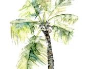 "Palm Tree Painting - Print from Original Watercolor Painting, ""Palm Tree"", Beach Decor, Beach, Palm, Palm Tree Print, Palm Print, Tropical"