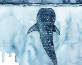 "Watercolor Painting, Whale Shark Painting, Whale Painting, Whale Print, Whale Art, Whale Print, Beach Decor, Print titled, ""Stars Collide"""