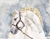 "Horse Painting - Print from my Original Watercolor Painting, ""Just a Silver Stallion"", Mustang, White Horse, Horse Art, Horse Decor"