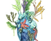 Watercolor Painting, Anat...