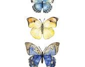 "Butterflies Painting - Print from my Original Watercolor Painting, ""Three Butterflies"", Watercolor Print, Butterfly Print, Butterfly Art"