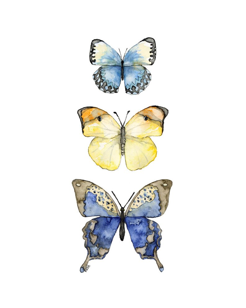 Butterflies Painting  Print from my Original Watercolor image 0