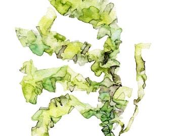 "Sea Lettuce Painting - Print from Original Watercolor Painting, ""Sea Lettuce"", Ocean Art, Green Seaweed, Under the Sea"
