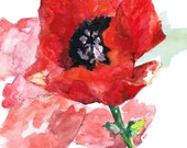 """Flower Painting - Print from Original Watercolor Painting, """"Poppies"""", Red Flower, Garden Window"""